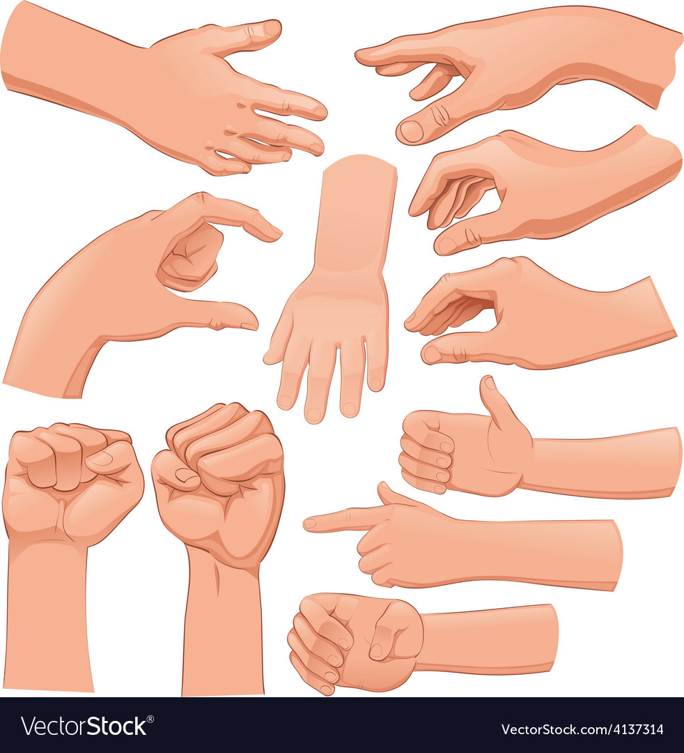 Set of several hands vector | Price: 1 Credit (USD $1)