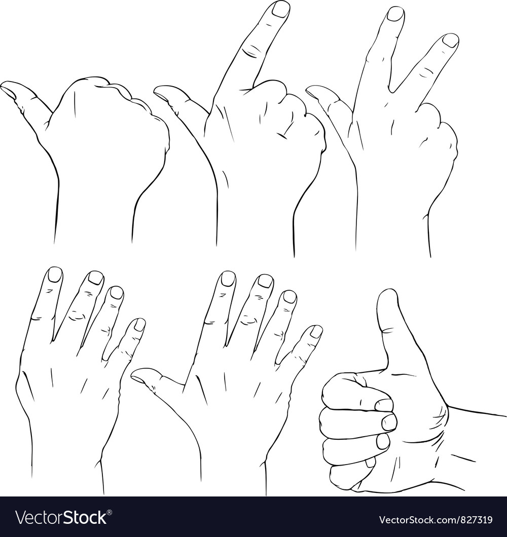 Counting fingers vector | Price: 1 Credit (USD $1)