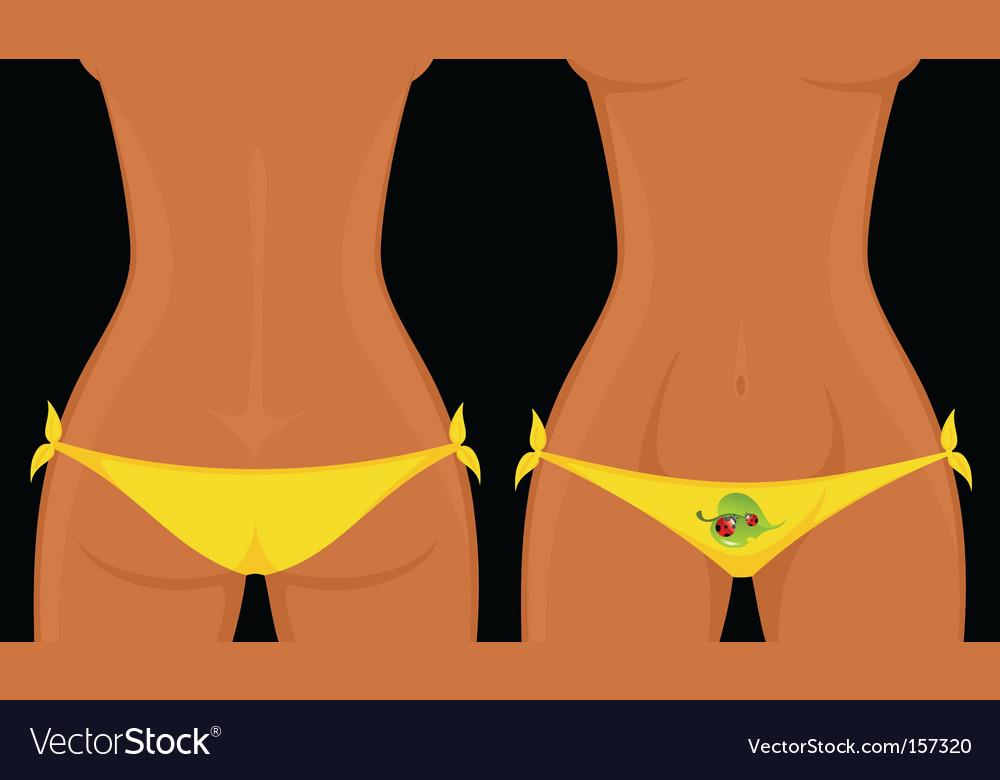 Bikini vector | Price: 1 Credit (USD $1)