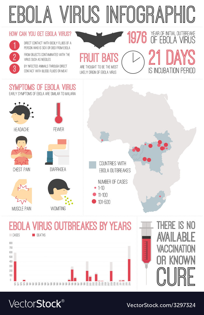 Ebola virus infographic vector | Price: 1 Credit (USD $1)