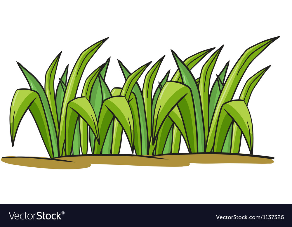 A grass vector | Price: 1 Credit (USD $1)
