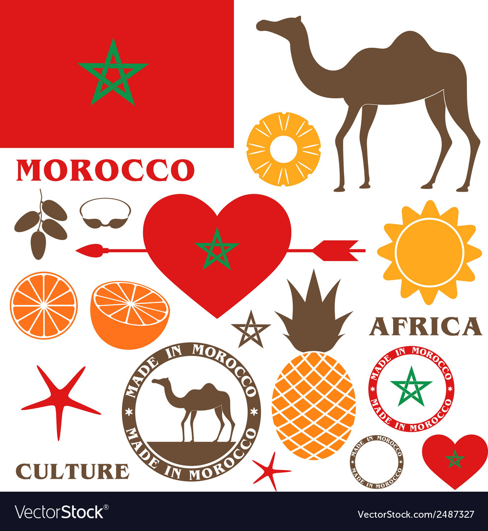 Morocco camel vector | Price: 1 Credit (USD $1)