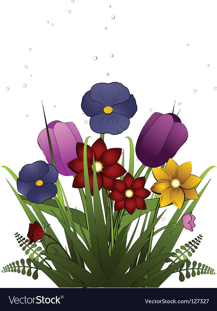 Spring tulips and pansies vector