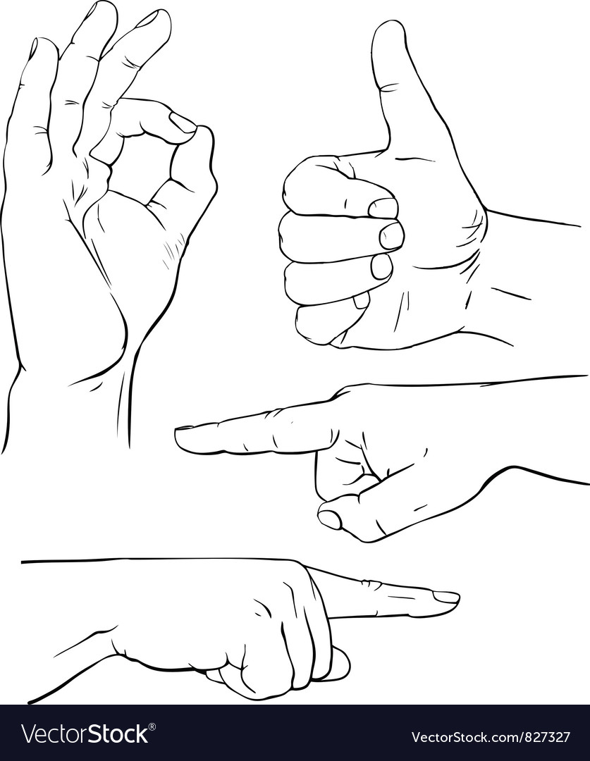 Various poses of human hands vector | Price: 1 Credit (USD $1)