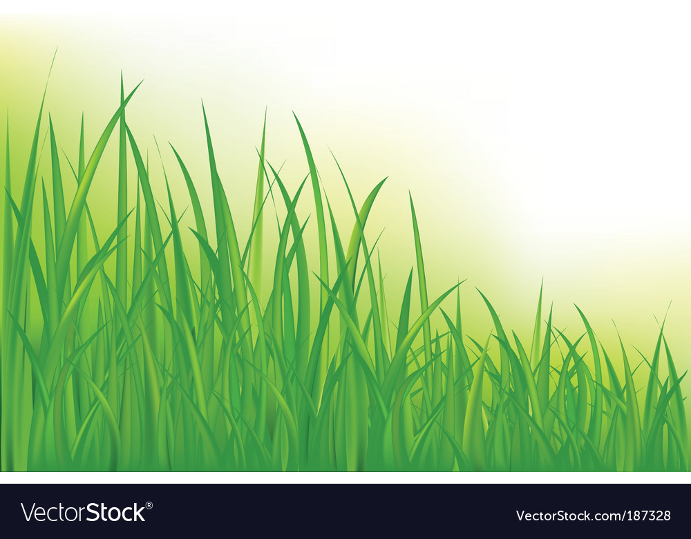 Long grass vector | Price: 1 Credit (USD $1)