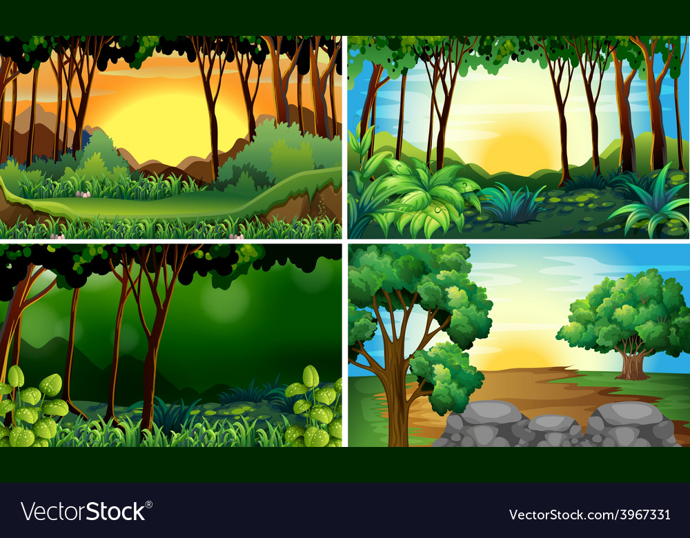 Forest scenes vector | Price: 3 Credit (USD $3)