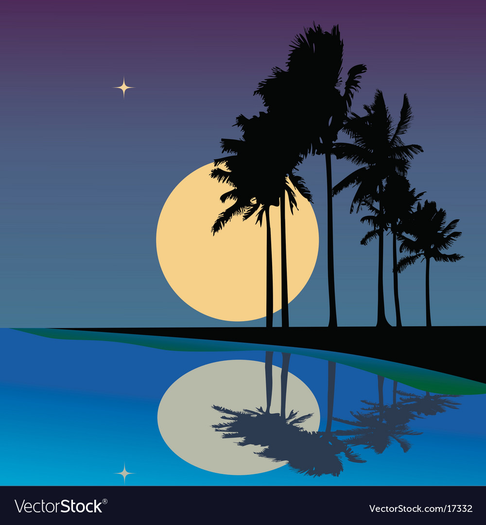 Tropical reflections vector | Price: 1 Credit (USD $1)