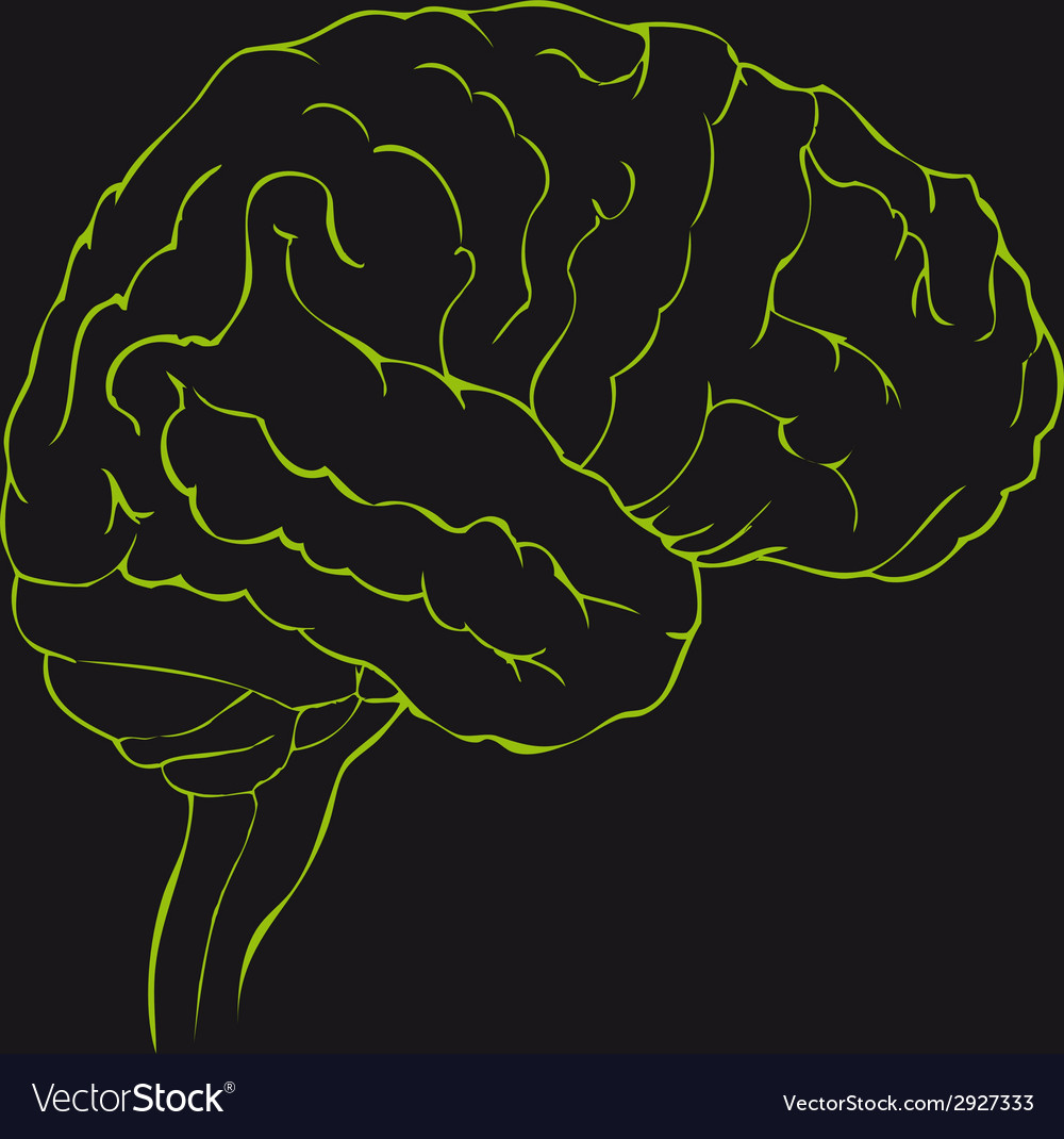 Brain in green side view vector | Price: 1 Credit (USD $1)