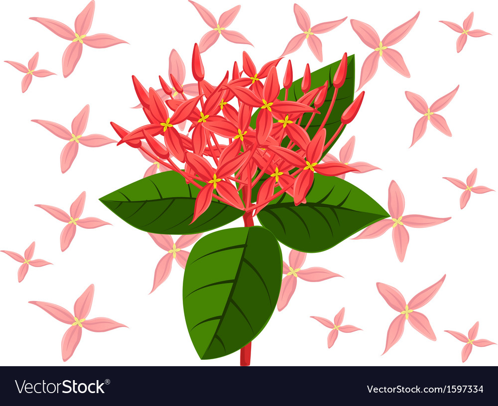 Flower spike vector | Price: 1 Credit (USD $1)