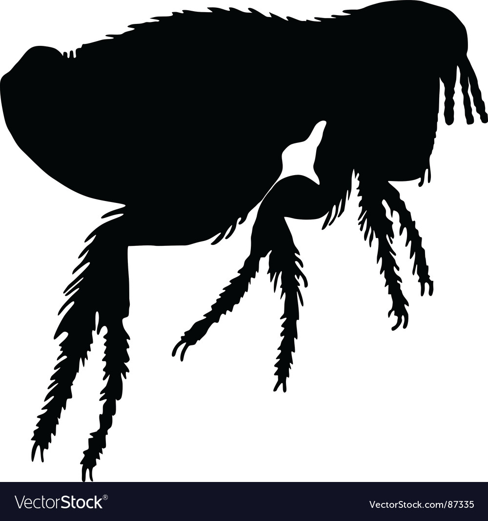 Dog flea silhouette vector | Price: 1 Credit (USD $1)