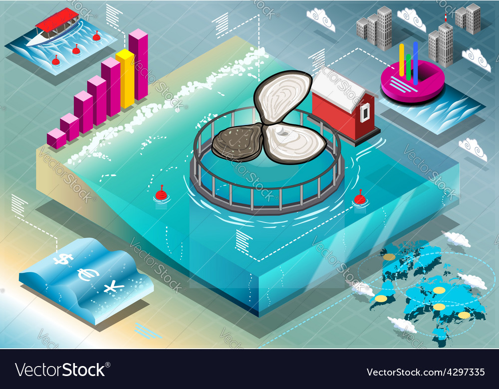 Isometric infographic of breeding oysters vector | Price: 3 Credit (USD $3)
