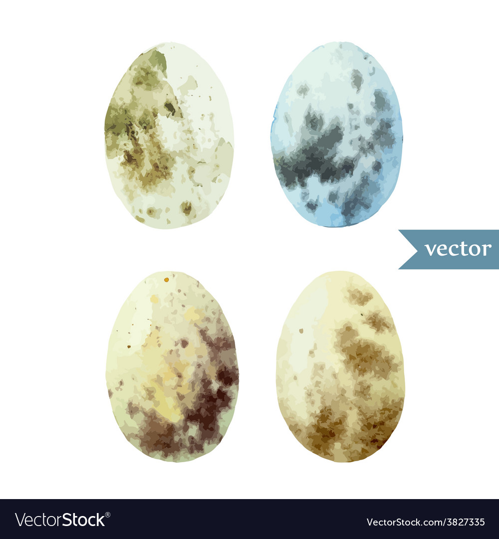 Watercolor egg set easter vector | Price: 1 Credit (USD $1)