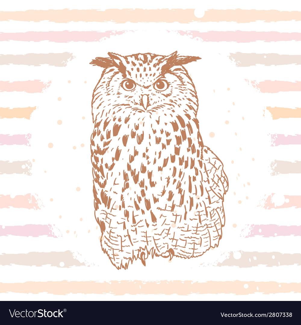 Owl sketch vector | Price: 1 Credit (USD $1)