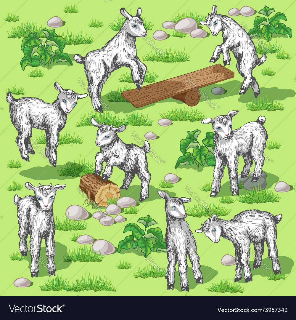 Funny goats set vector | Price: 1 Credit (USD $1)