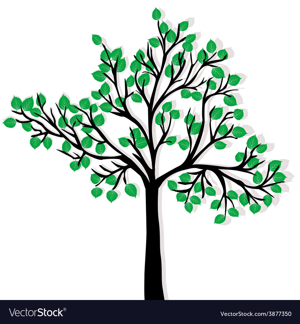 Green tree isolated over white background vector | Price: 1 Credit (USD $1)