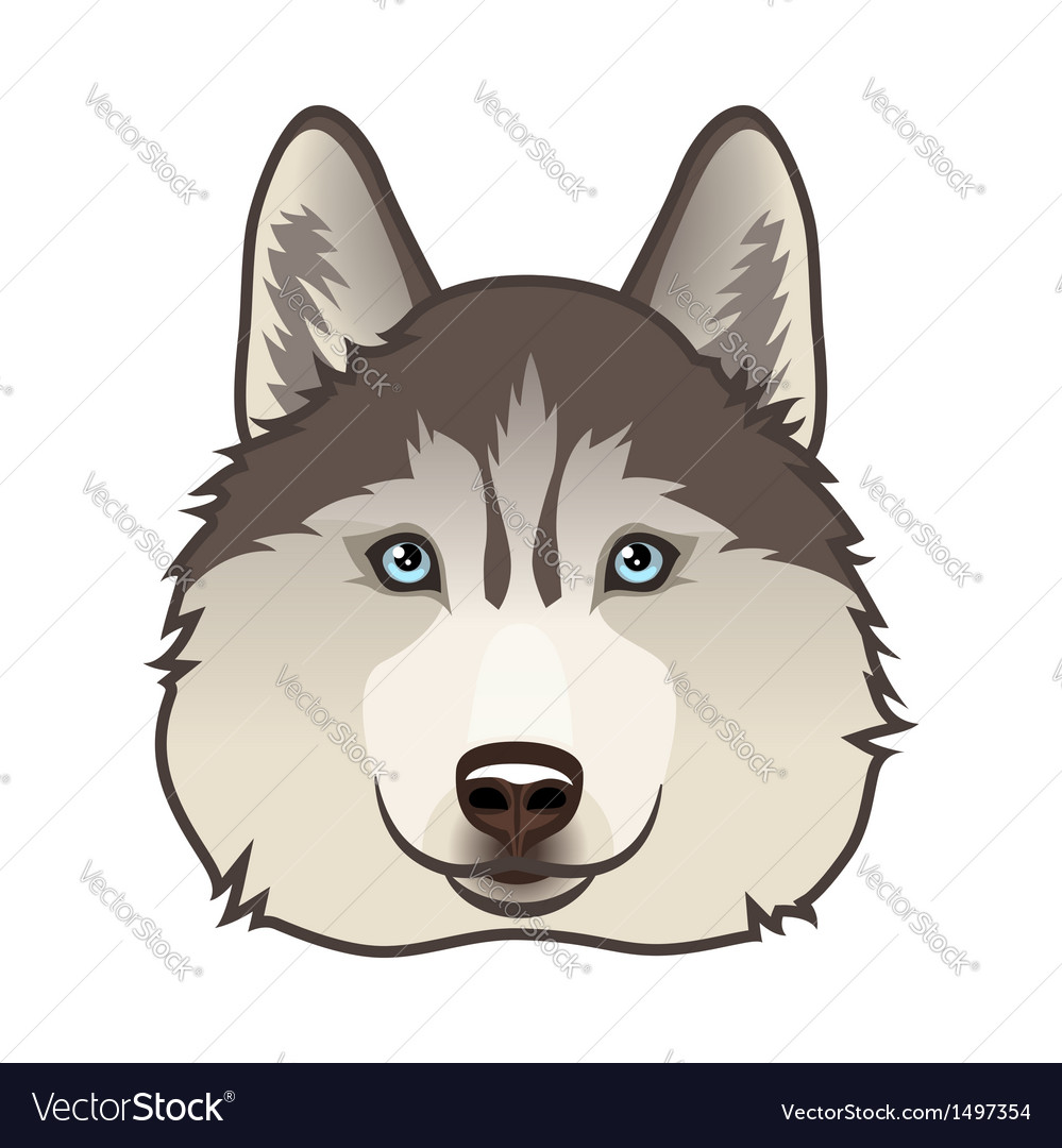 Husky vector | Price: 1 Credit (USD $1)