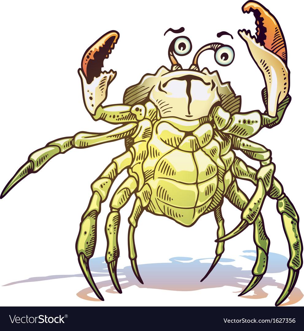 Sea crab vector | Price: 1 Credit (USD $1)