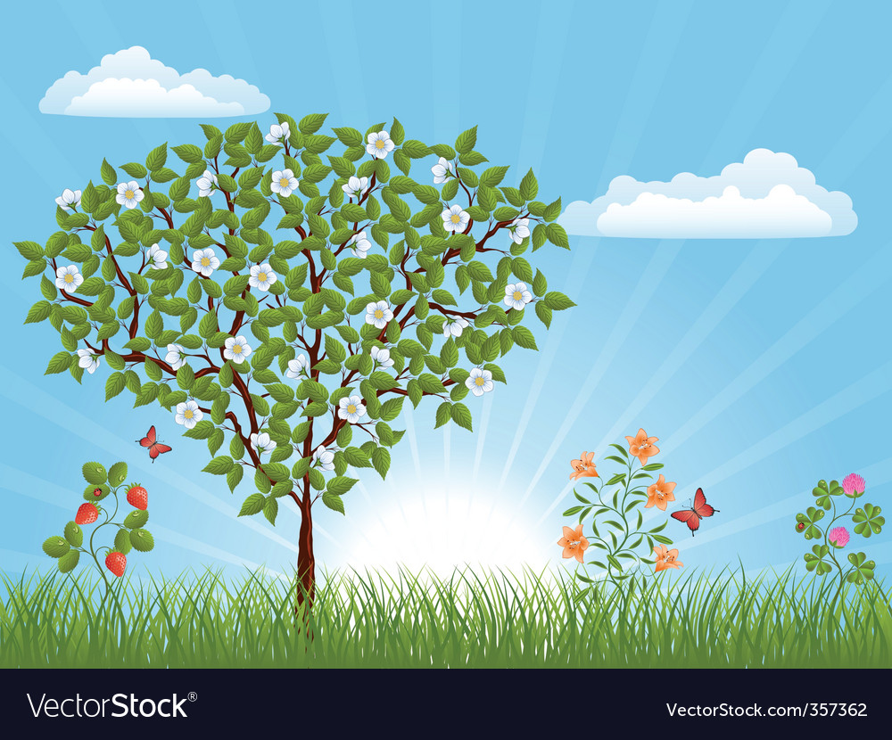 Nature landscape with a tree vector | Price: 1 Credit (USD $1)