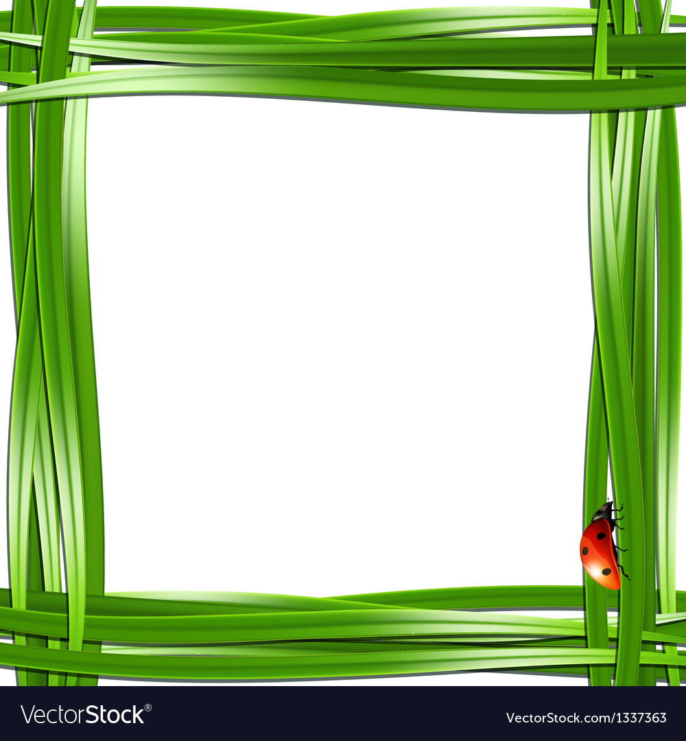 Grass frame with ladybugs vector | Price: 1 Credit (USD $1)