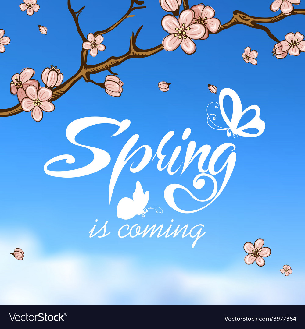 Typographic design lettering spring design on vector | Price: 1 Credit (USD $1)