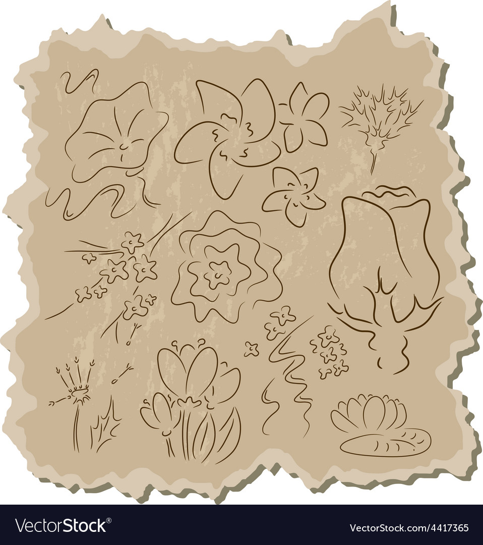 Flowers collection vector | Price: 1 Credit (USD $1)