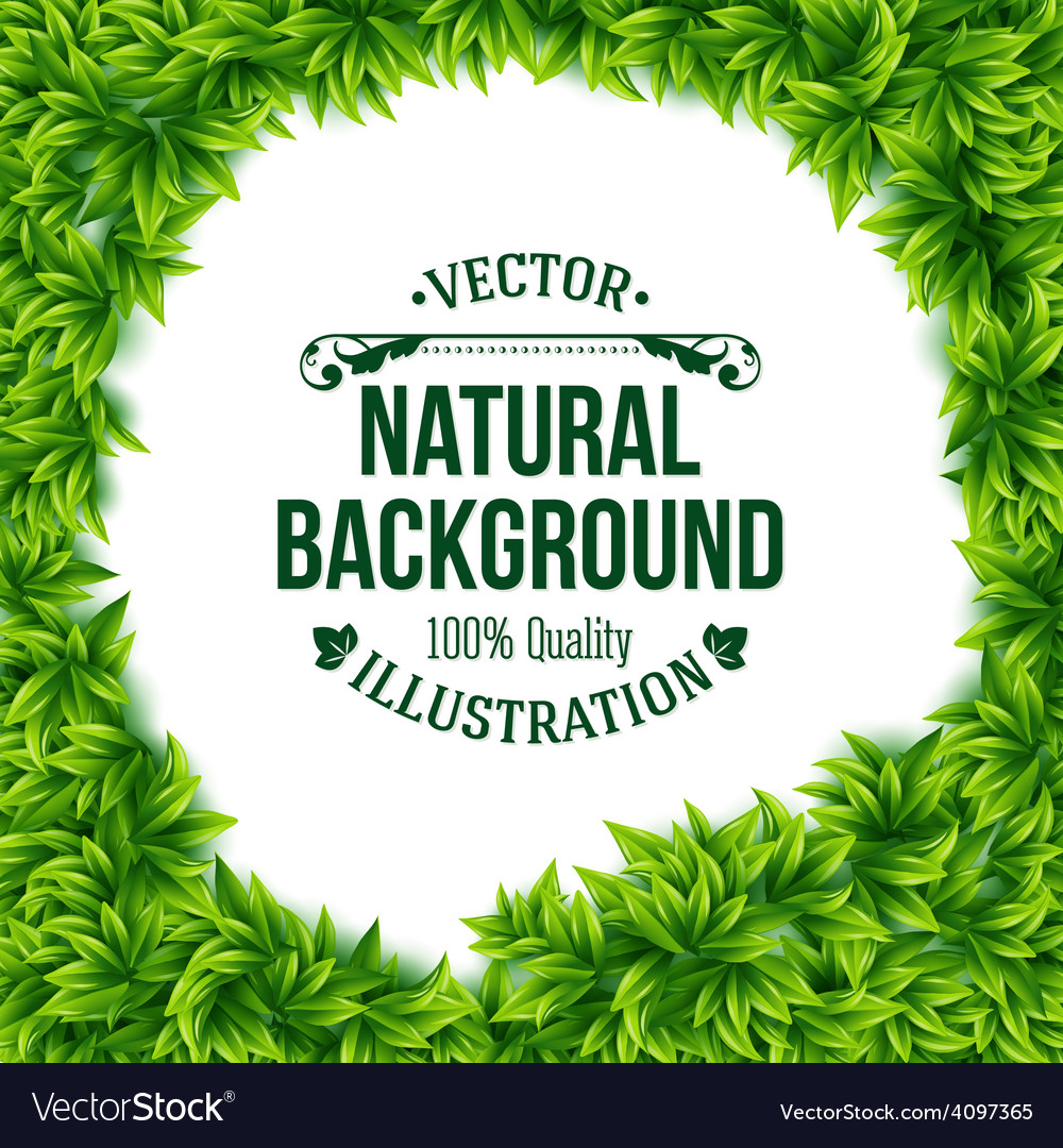 Natural frame of fresh green spring leaves vector   Price: 3 Credit (USD $3)