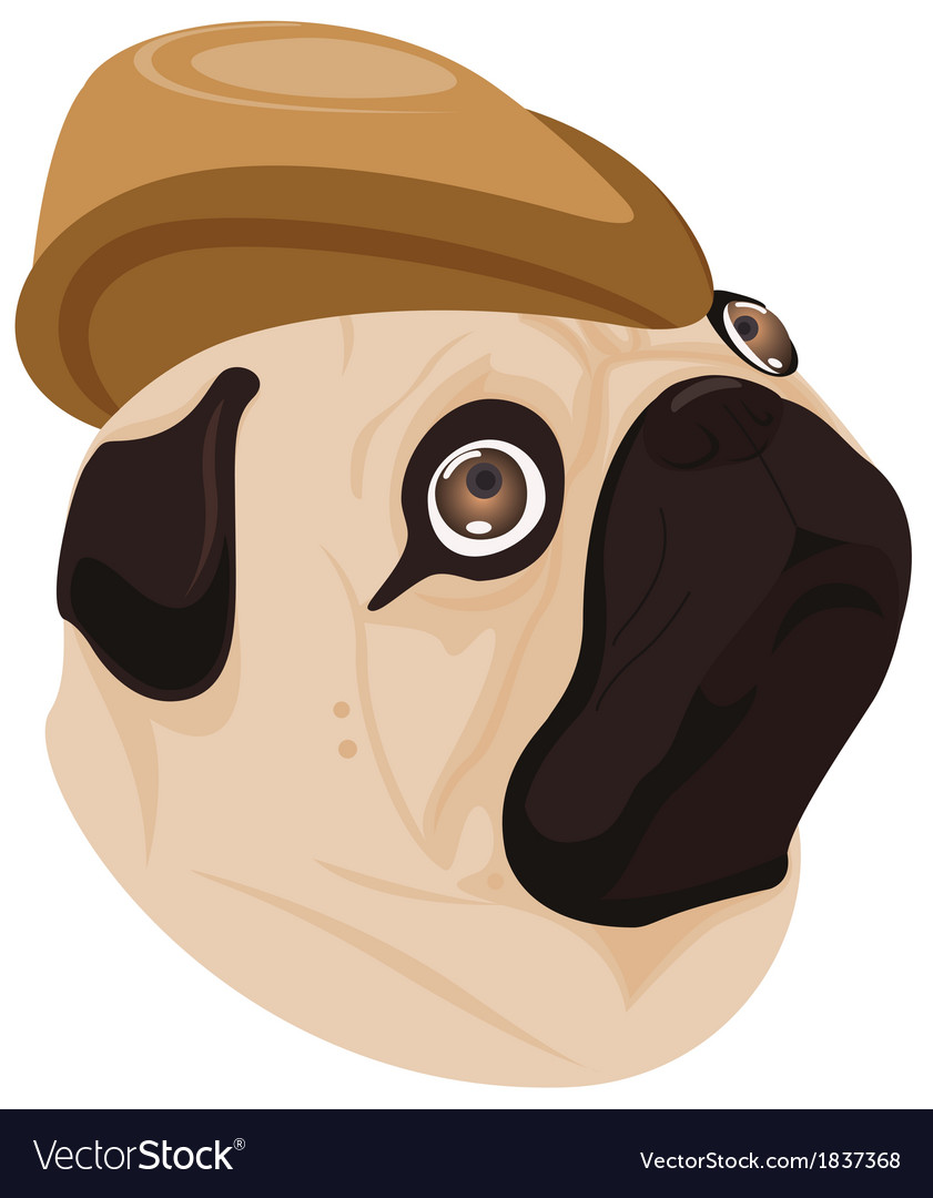 Dog brown hat on white background vector | Price: 1 Credit (USD $1)