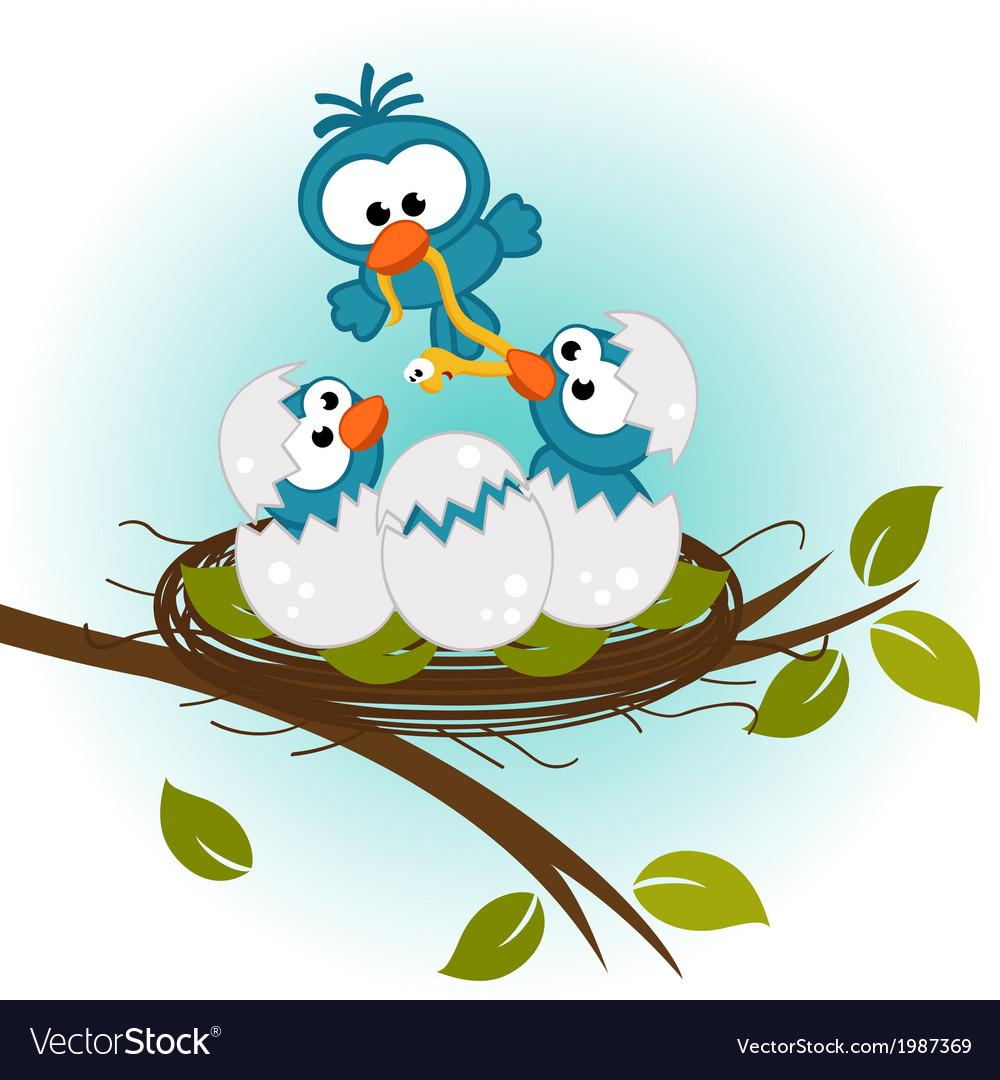 Bird feeding babies in nest vector | Price: 1 Credit (USD $1)