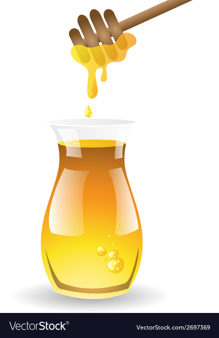 Honey on white background vector