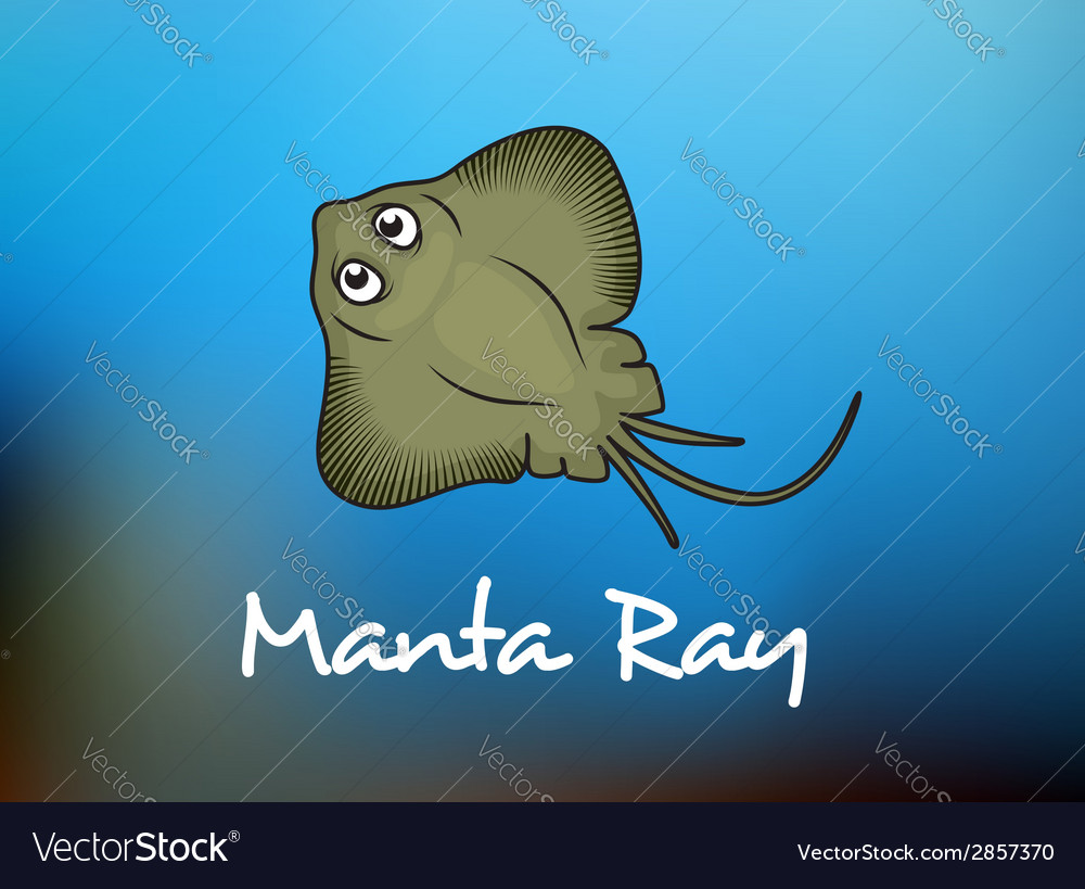 Funny cartoon stingray or manta vector | Price: 1 Credit (USD $1)
