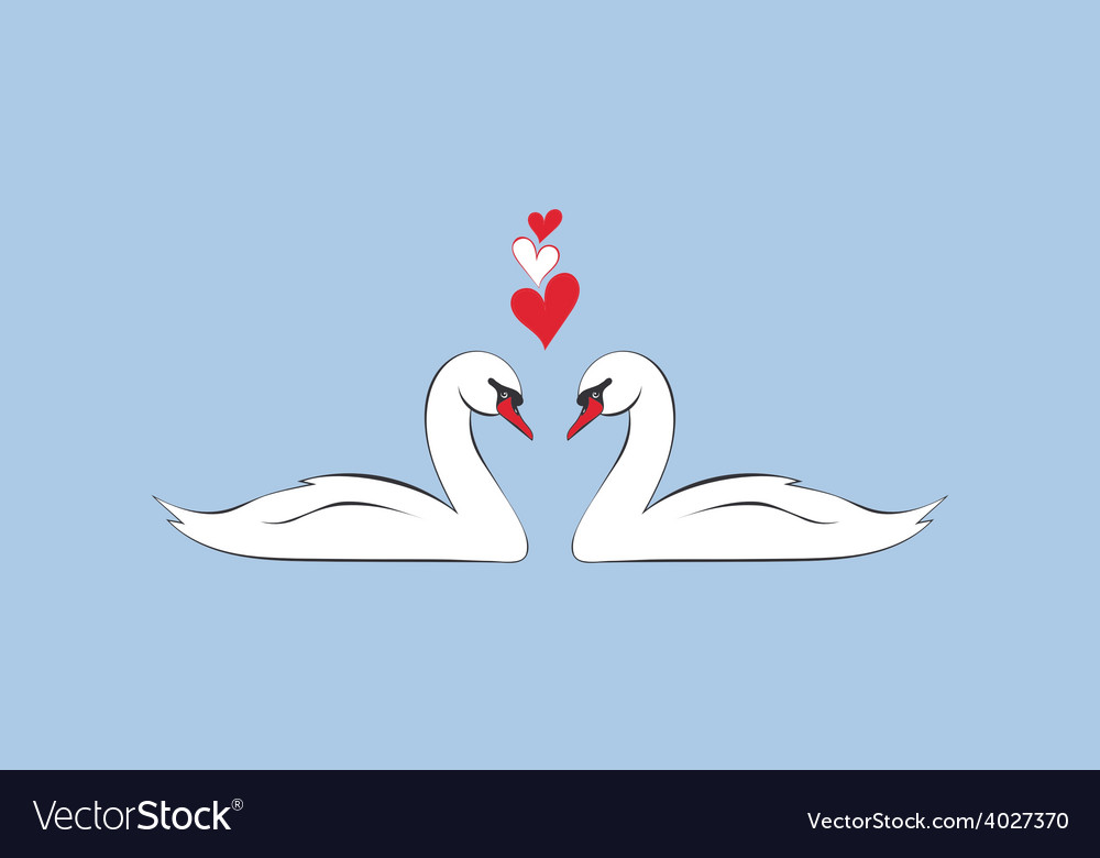 Loving couple of swans vector | Price: 1 Credit (USD $1)