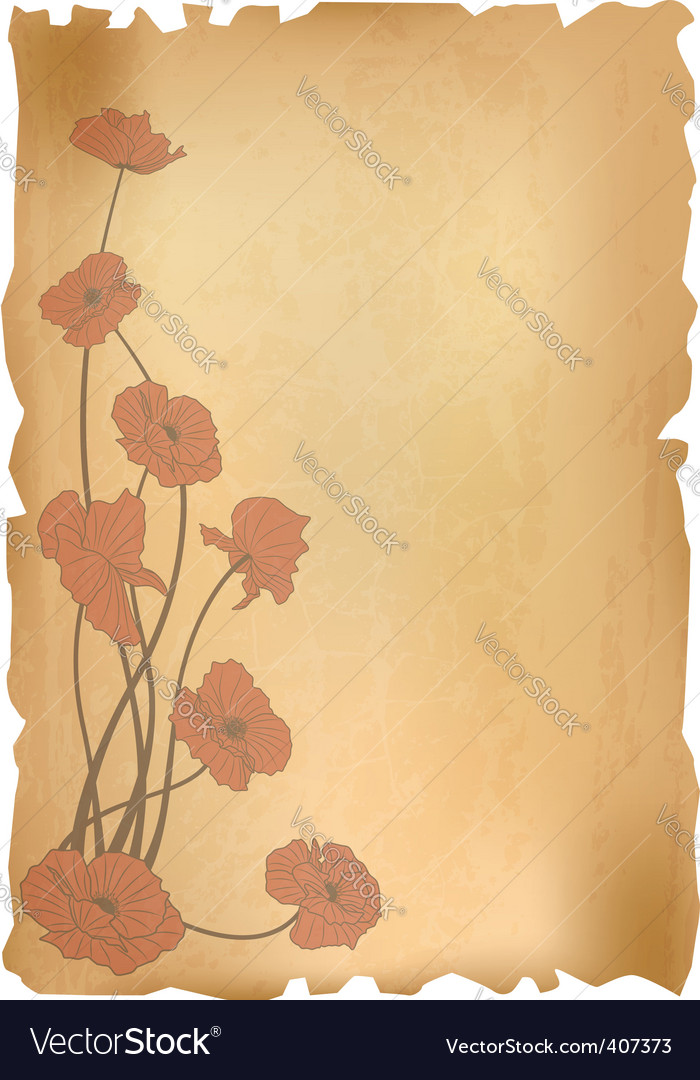 Vintage poppies background vector