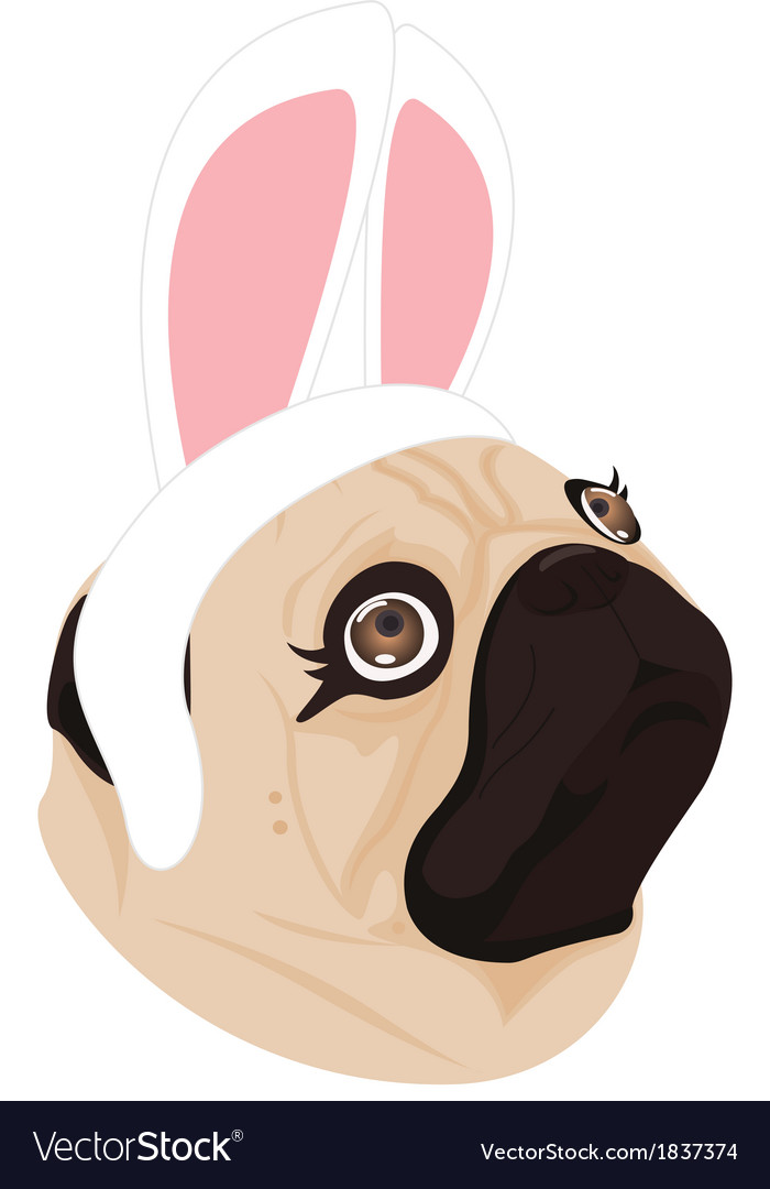 Lady dog rabbit on white background vector | Price: 1 Credit (USD $1)