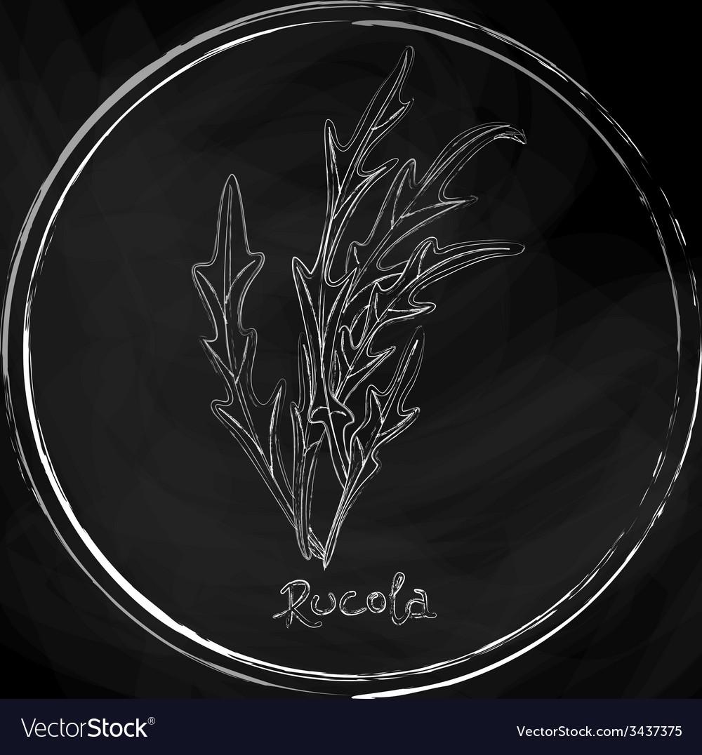 Dark rucola vector   Price: 1 Credit (USD $1)
