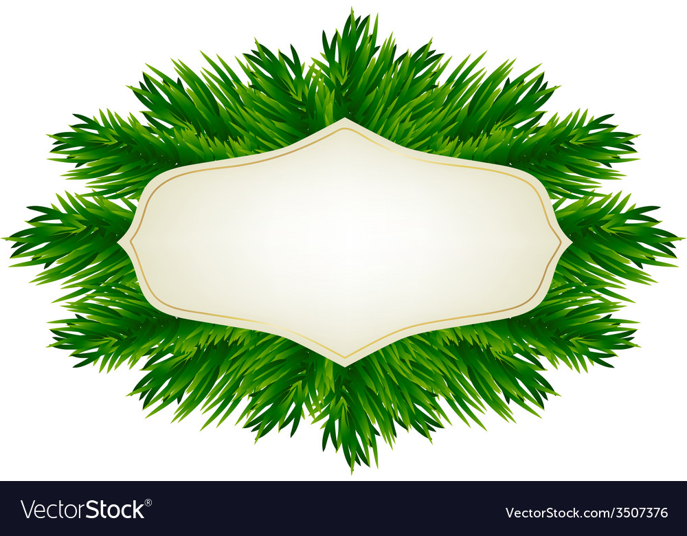 Fir-tree branches and baubles vector | Price: 1 Credit (USD $1)
