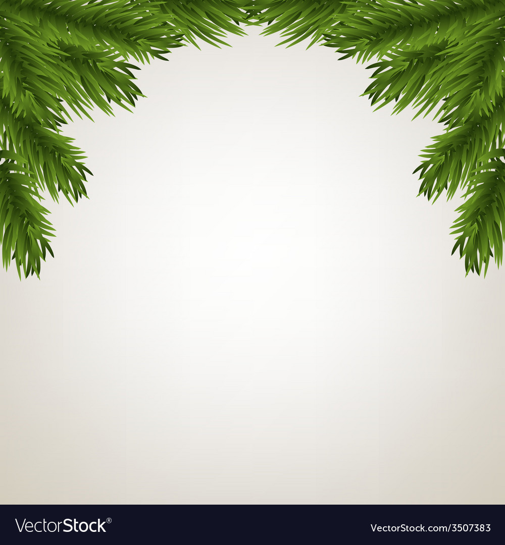 Fir tree branches frame vector | Price: 1 Credit (USD $1)