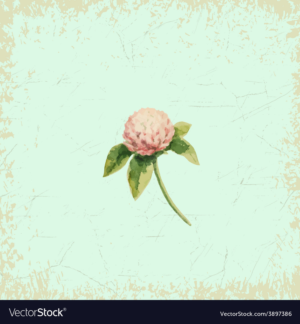 Clover flower on vintage background watercolor vector | Price: 1 Credit (USD $1)