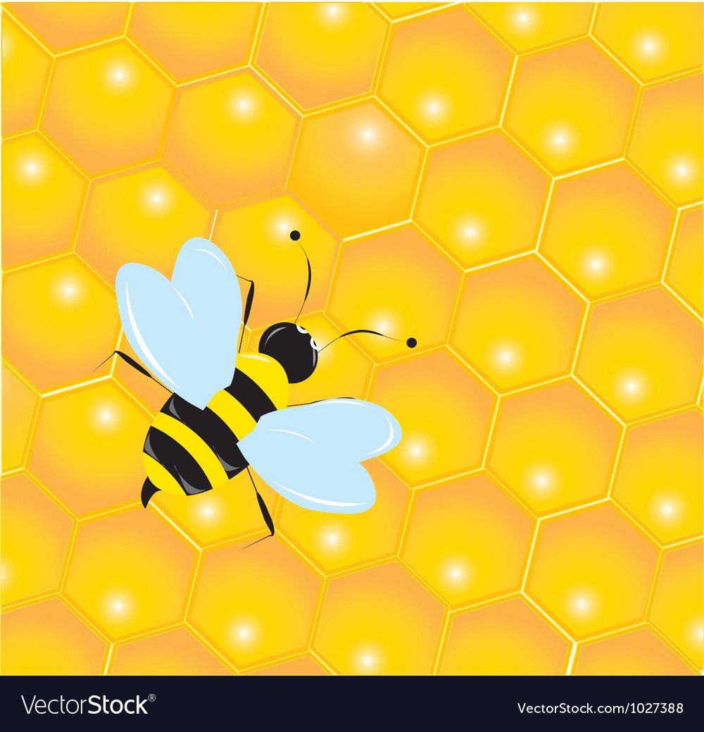 Bee in the hive vector | Price: 1 Credit (USD $1)