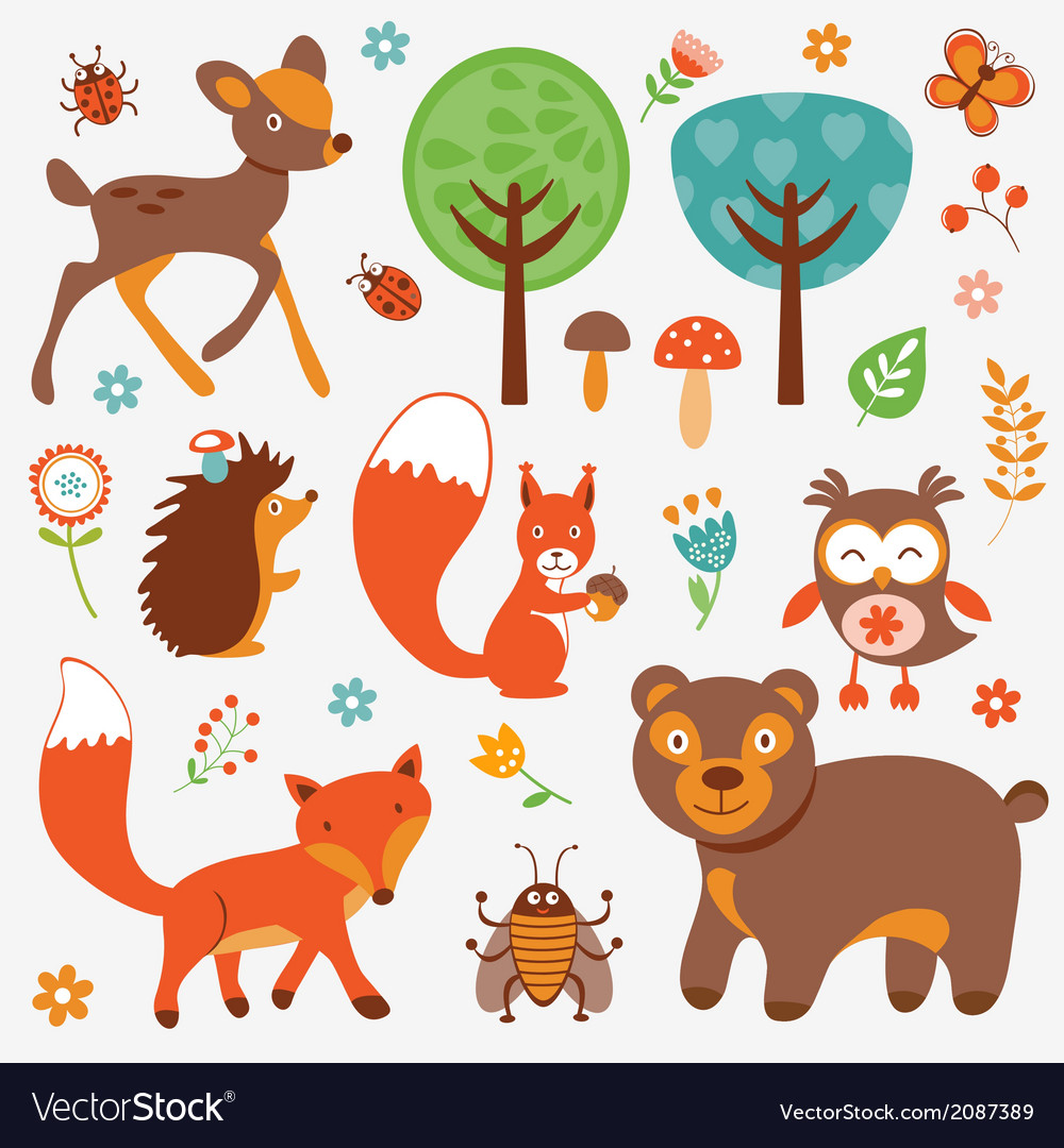 Funny forest animals collection vector | Price: 1 Credit (USD $1)