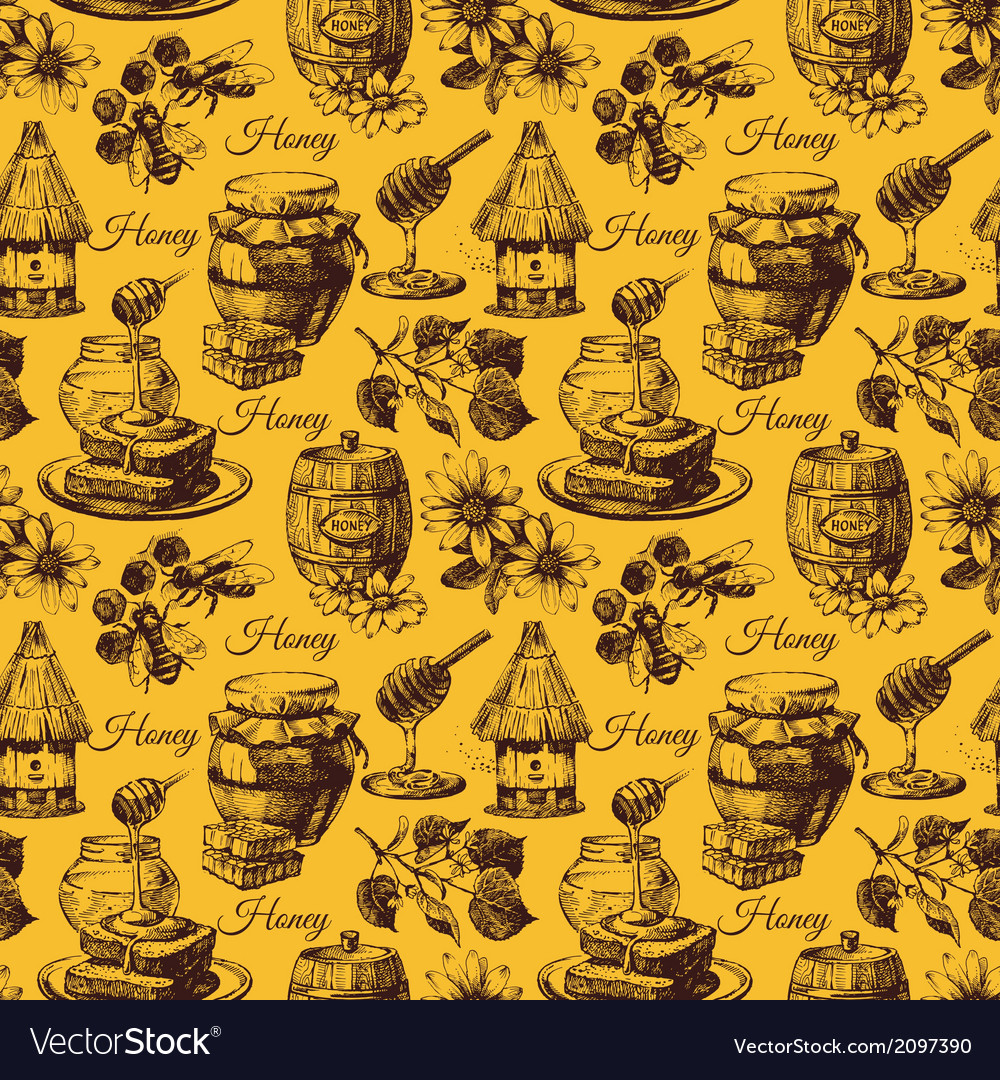 Honey seamless pattern with hand drawn sketch vector | Price: 1 Credit (USD $1)