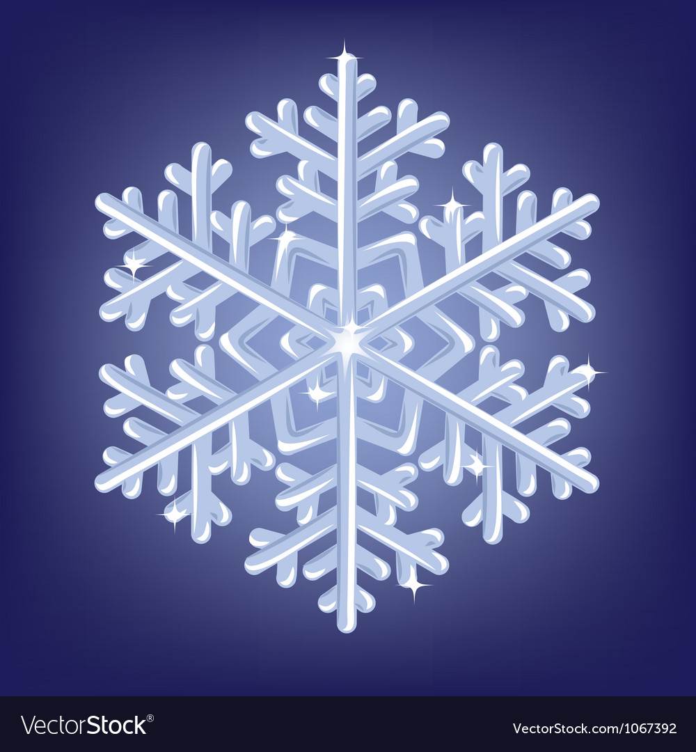 Icy snowflake vector | Price: 1 Credit (USD $1)