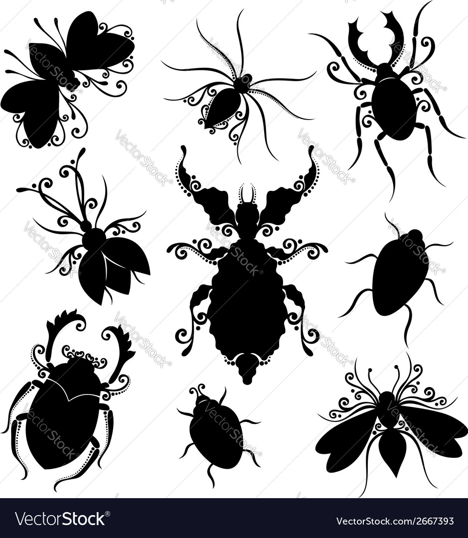 Set of insects vector | Price: 1 Credit (USD $1)