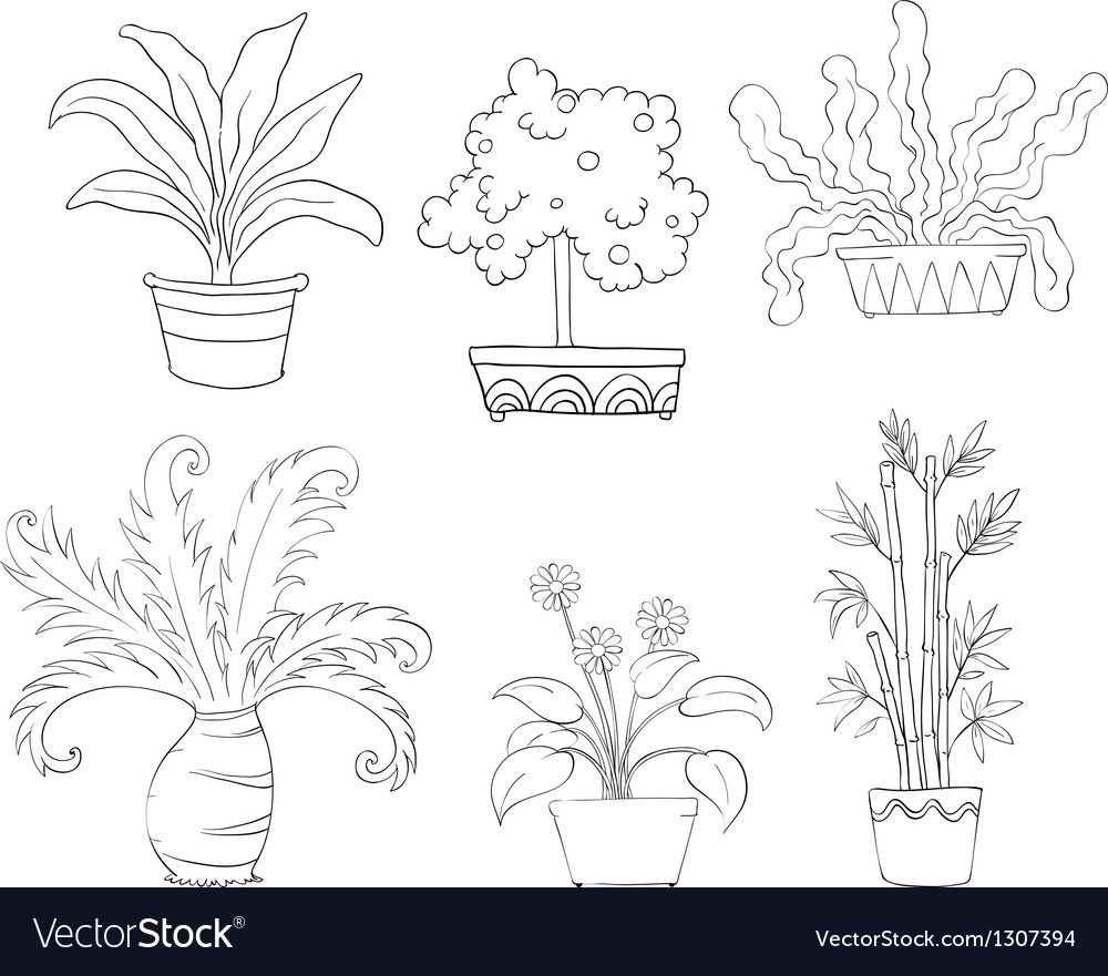 Six different kinds of plants vector | Price: 1 Credit (USD $1)