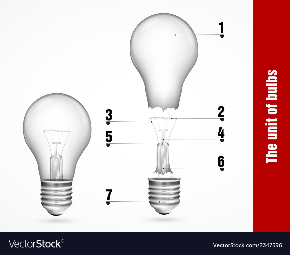 The unit of energy-saving lamps vector | Price: 1 Credit (USD $1)