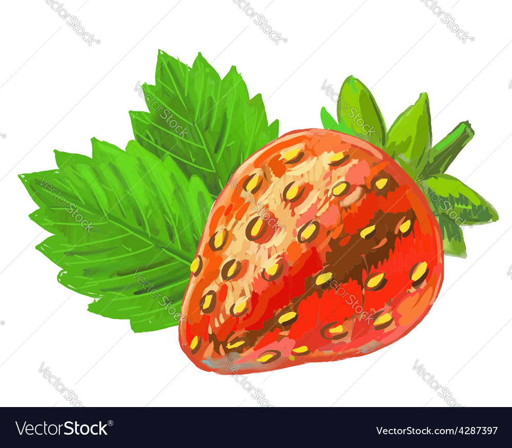 Picture of strawberry vector | Price: 1 Credit (USD $1)