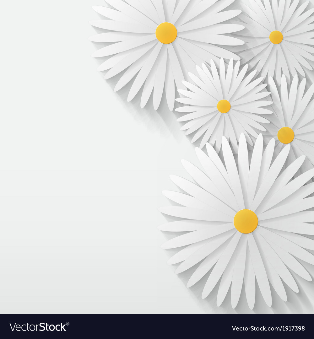 Flower chamomile background vector   Price: 1 Credit (USD $1)