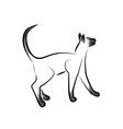 Siamese cat vector