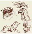 Dogs set sketch 380 vector