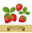 Set of various stylized strawberries vector