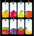 Set of fruit tags vector
